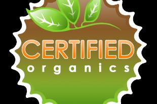 best organic vitamins